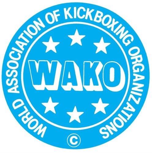 Lábfejes lábszárvédő, Top Ten, Lowkick, WAKO